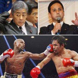 自公議員2人にIR接待疑惑 米業者の招待でボクシング観戦か