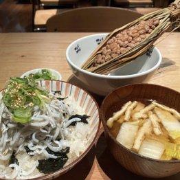 わらづ納豆に「しらすかけご飯とお味噌汁のセット」(950円)/