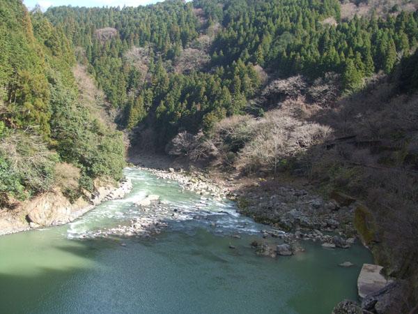 保津峡を眺めて走る(提供写真)