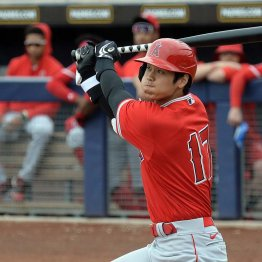 MLB開幕延期の影響は日本人選手にも…大谷の復帰は先送り