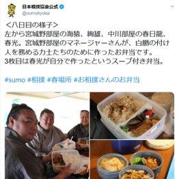"""無観客大相撲で「弁当」が話題 各部屋から""""自慢ツイート"""""""