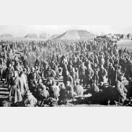 ドイツ軍の捕虜となったソ連軍兵士(C)World History Archive/ニューズコム/共同通信イメージズ