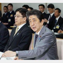 新型コロナウイルス感染症対策本部の会合で発言する安倍首相(C)共同通信社
