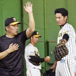 阪神は山本昌氏が…元スター選手による臨時コーチの問題点