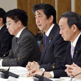 永田町に流れる「5月減税解散で政権延命」という噂の真相