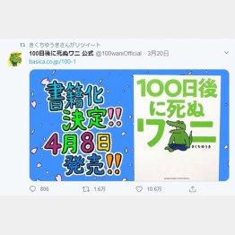 「100日後に死ぬワニ」/(ツイッターから)