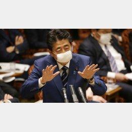 「お肉券」や「お魚券」といい、「1世帯にマスク2枚配布」といい、安倍政権が打ち出す政策は大きく間違えている(C)日刊ゲンダイ