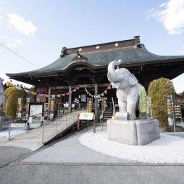 長福寿寺(千葉県)