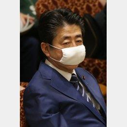 サイズの合ったものを(マスクを着けて委員会に臨む安倍首相)/(C)日刊ゲンダイ