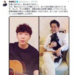 SNS監視に24億円 安倍政権イメージ戦略にカネじゃぶじゃぶ