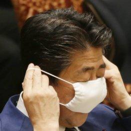 全世帯に2枚ずつ…布製マスクは洗えば家族で使い回せる?