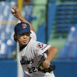 永遠の野球小僧・高津臣吾ほど守りやすい投手はいなかった