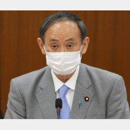 菅官房長官はムニャムニャと言い訳(C)日刊ゲンダイ
