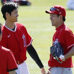 ダルと秋山は有利 3地区制再編が分ける日本人選手の明暗