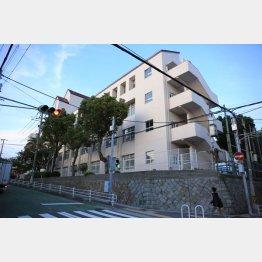 いじめが繰り返された東須磨小学校(C)日刊ゲンダイ