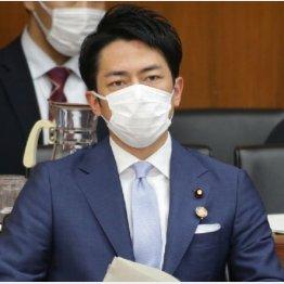 パタッと見かけなくなった進次郎氏(C)日刊ゲンダイ