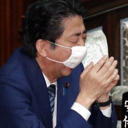 日本はOECD加盟国の中で新型コロナの検査数がほぼ最下位
