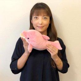 中山エミリさん イルカと泳ぐ夢を夫や娘と一緒にかなえる