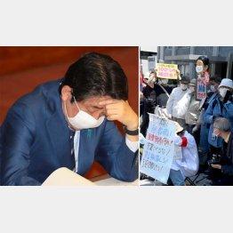 国民をナメている(安倍首相)、怒って当然だ(C)日刊ゲンダイ