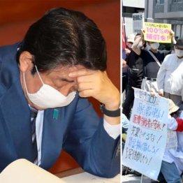 今度は#安倍晋三に抗議します 国民怒り心頭で30万ツイート