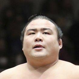 28歳の若さで亡くなった勝武士