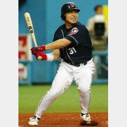 2007年にはプロ野球記録となるシーズン代打安打31をマークした真中満(C)日刊ゲンダイ