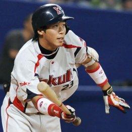 プロ初出場がCSの大舞台 山田哲人のスタメン抜擢に驚いた