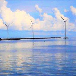 デンマーク・チュノー島 音がない小さな島に流れる時間