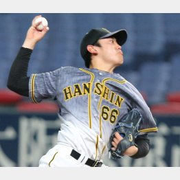 小川一平投手は長身から投げ下ろす真っすぐが魅力(C)日刊ゲンダイ