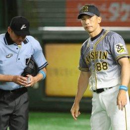 阪神の逆転負けは…コロナのせいか矢野監督の責任か?