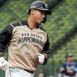 今季の日ハム中田翔は「脱メジャー打法」堅実打撃が戻る