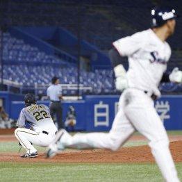 阪神は開幕1勝5敗で低迷…二軍は高校球児の人気取りに血眼