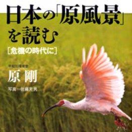 「日本の『原風景』を読む」原剛著
