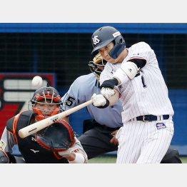 27日の巨人戦で満塁本塁打を放つヤクルトの山田哲(C)共同通信社