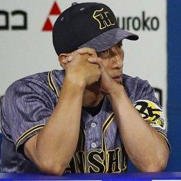 阪神は開幕3カード負け越し…CSなき今季の出遅れは大打撃