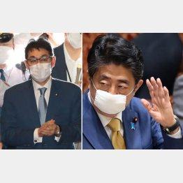 「安倍首相(右)らが期待している」と、河井克行前法相(C)日刊ゲンダイ