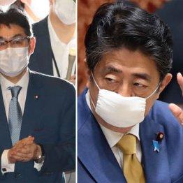 河井前法相「安倍首相が期待」と選挙前月820万円バラまき