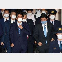 大企業しか考えていない(手前左から、安倍首相と西村経済再生相)/(C)日刊ゲンダイ