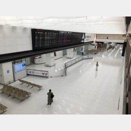 海外旅行需要は激減(成田空港)/(C)日刊ゲンダイ