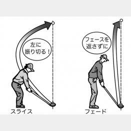 イラスト・渡辺隆司(C)日刊ゲンダイ