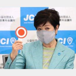 やっぱり「選挙ファースト」か(小池百合子都知事)/(C)日刊ゲンダイ