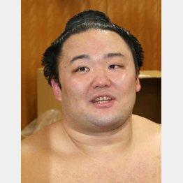 新大関の朝乃山(C)日刊ゲンダイ