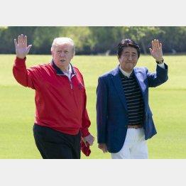 安倍首相はトランプ米大統領を令和初の国賓として招待(C)JMPA