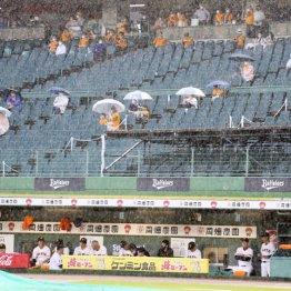 3試合がサヨナラ試合 初めて観客入れたプロ野球の泣き笑い