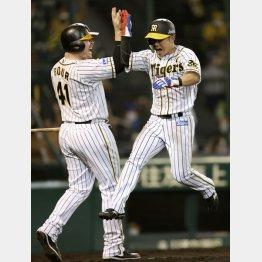 六回に大山の先制打で本塁生還、跳び上がって喜ぶ糸原(左はボーア)/(C)共同通信社