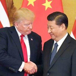 <8>対中戦略の内部分裂…米中冷戦の真相は大統領の身勝手