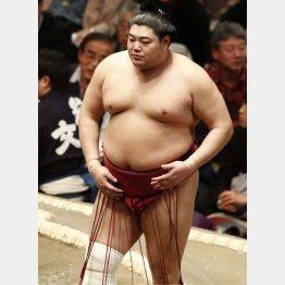 問題児(25日から休場中の阿炎)/(C)日刊ゲンダイ