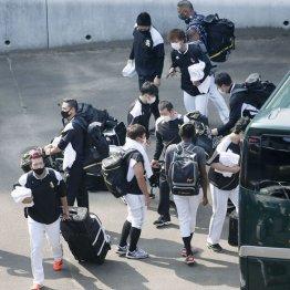 コロナ対策に甘いプロ野球 蔓延してもシーズン強行の根拠