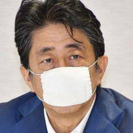 """安倍首相""""激ヤセ""""と13年前の悪夢 内閣改造前の9月退陣説も"""
