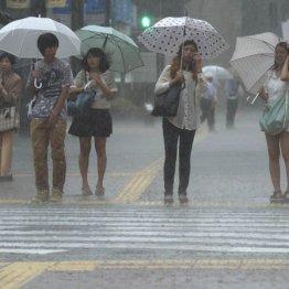 ゲリラ豪雨&雷雨対策 都心は中野区と練馬区が襲われやすい